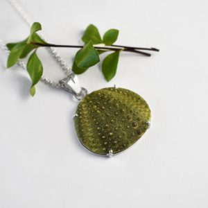 Big Sea Urchin Necklace