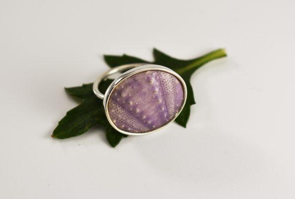 Purple1 (klein)