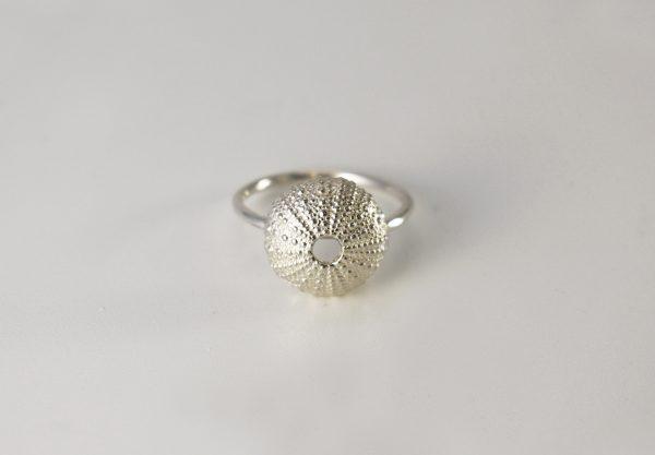 Su Sil ring1 (klein)