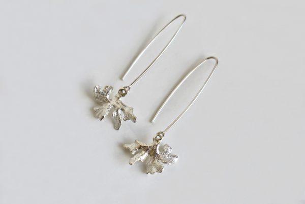 Coral Ears 1 (k)