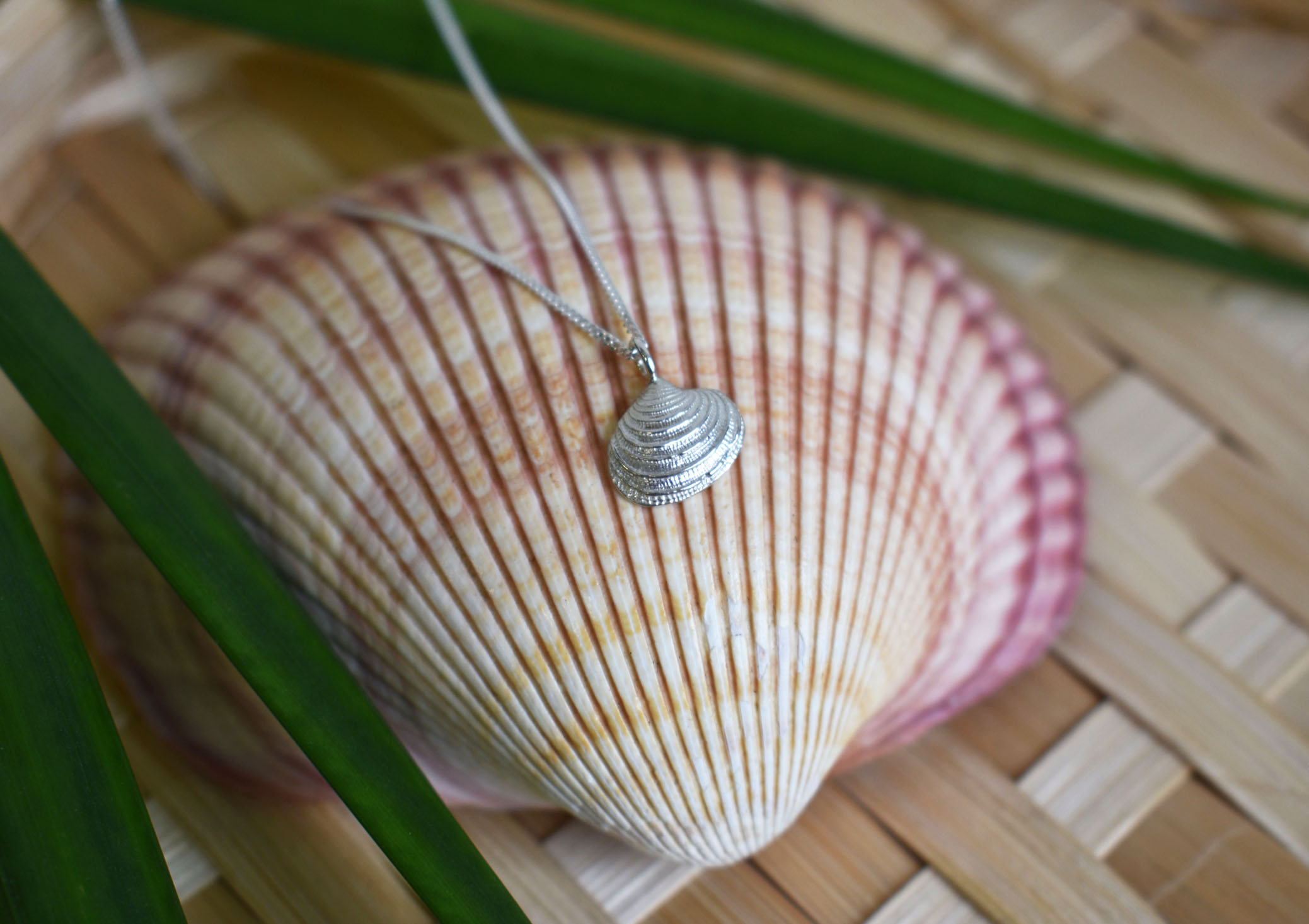 Scallop Necklace 2 (k)